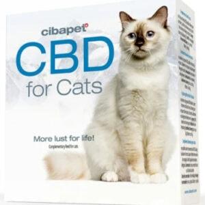 pastilles de cbd pour chats cibdol