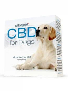 pastilles de cbd pour chiens cibdol