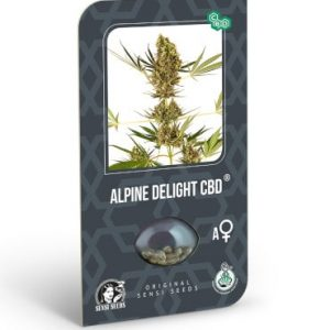 alpine delight cbd automatic sensi seeds 2