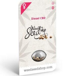 diesel cbd femelle wss 2