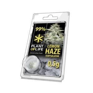 terpsolator lemon haze 500mg green owl